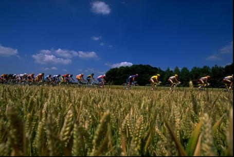 Tour de France Wheat Fields Podium Cafe
