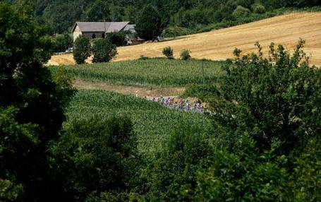 Tour de France Podium Cafe Revel