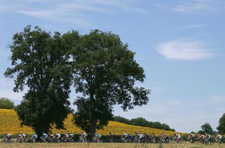 Tour de France Podium Cafe