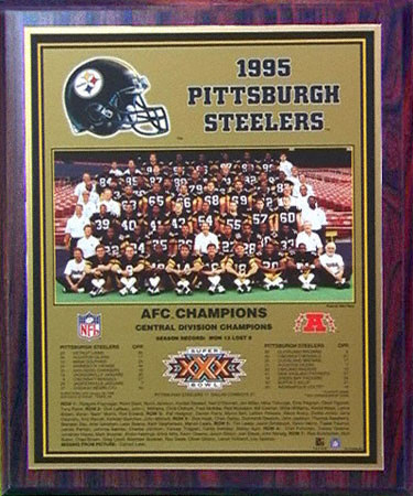 Pittsburgh-steelers-healy-plaque-afc-champs-3321809_medium
