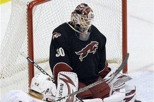 59379_ducks_coyotes_hockey_medium