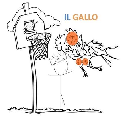 Gallo12_medium