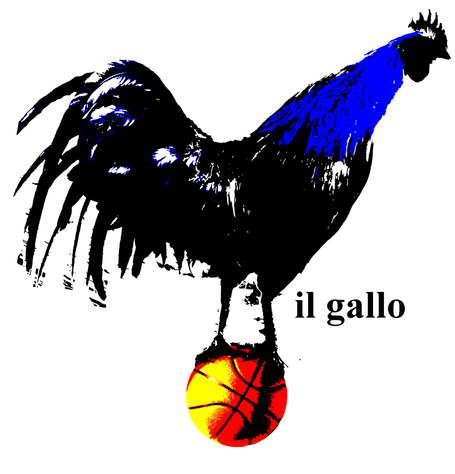 Gallo13_medium