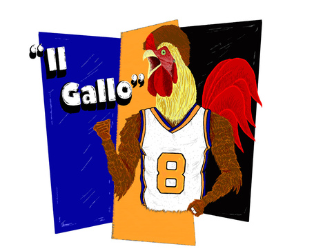 Gallo16_medium