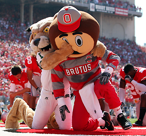 Brutus-buckeye-attack_medium