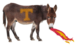 Jackson the Mule