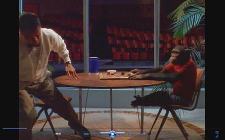 Monkey12_medium