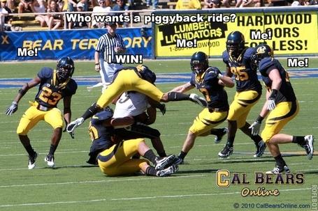 Calfball15_medium