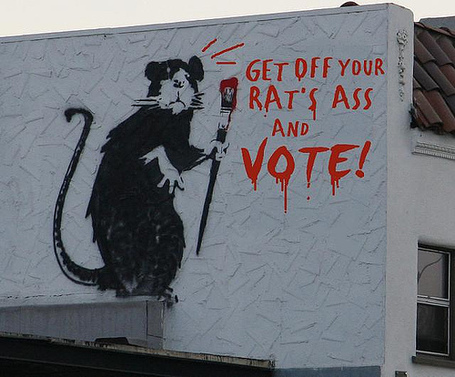 Rats_ass_medium