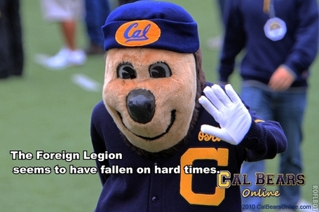 Cal_arizona_state_oski_medium