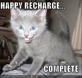 Funny-pictures-happy-recharge-grey-kitten_medium