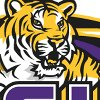 Lsulogosmall_medium