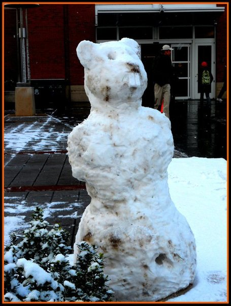Beaver_snowman_aaron_nickell_medium