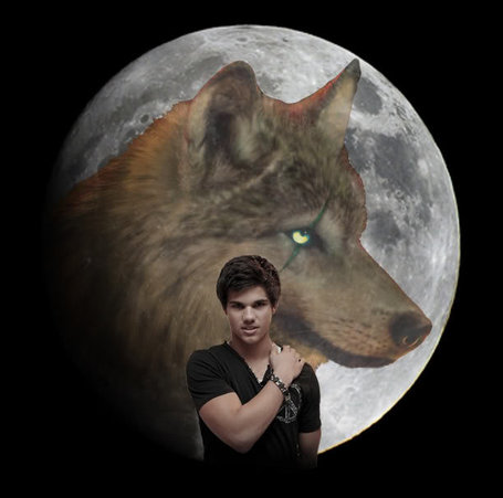 Jacob-wolf-newmoon_medium