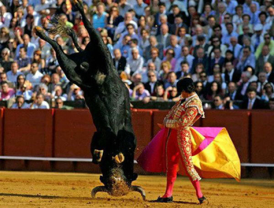 Bullfighting_medium