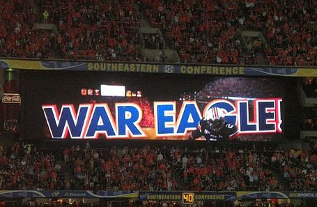 War_eagle_medium