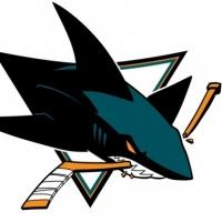 Sharks_medium