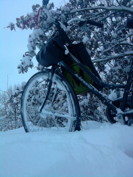 Sneeuw_medium