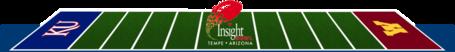 Insight_field_medium