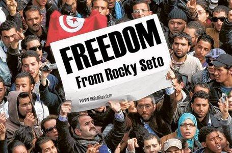 Seto_freedom_medium