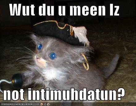 Piratekat_medium