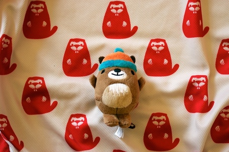 Marmotte_medium