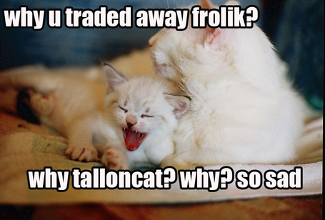Froliktrade_medium