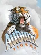 Tiger_in_the_clouds_medium