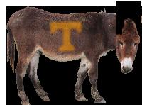Jackson the Mule Hopson