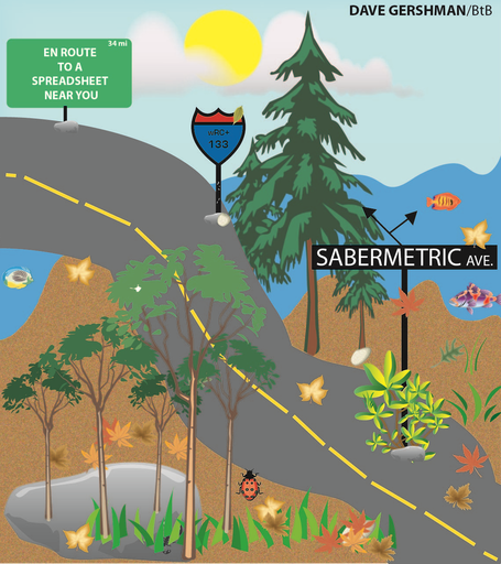 Saberave_medium