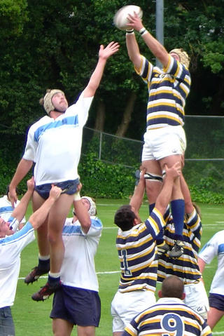 Mt-lineout_medium
