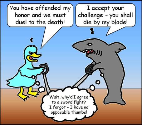 Sharkduckduel_medium