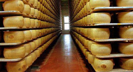 Parmigiano_reggiano_factory_medium