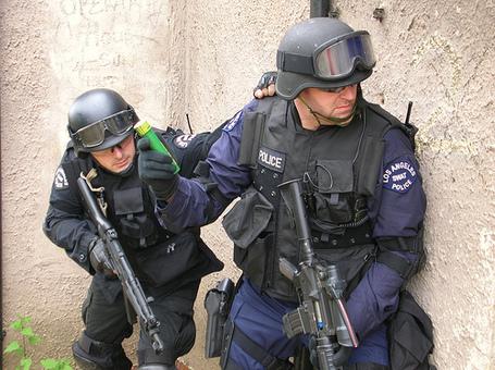 Swat_team_medium