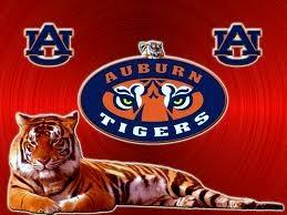 Auburn_tigers_medium