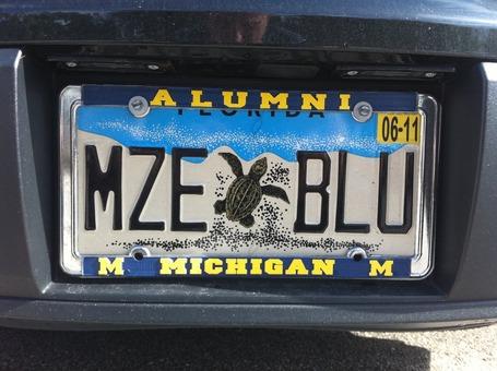 Mzeblu_medium