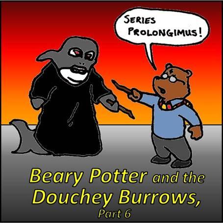 Beary_potter_medium