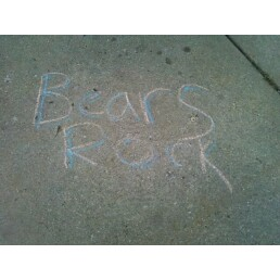 Bears_rock_medium