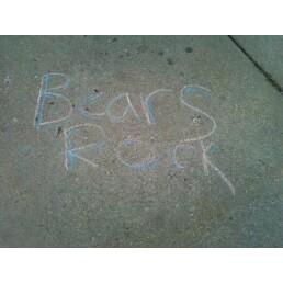 Bears_rock_medium