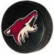 Coyotes_game_medium