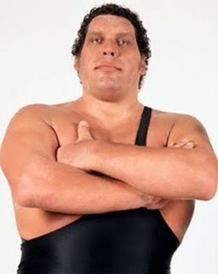 Sportsad_andrethegiant_display_image_medium