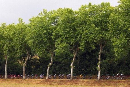 Under the trees in the rain. Tour de France 2011, stage 11, Lavaur. Photo: Bryn Lennon/Getty.