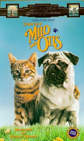 Otis_medium