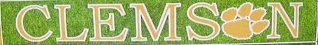 Clemson_medium