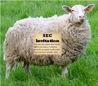 Sec_sheep_medium