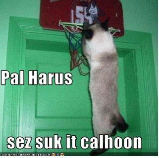 Paulharris_medium