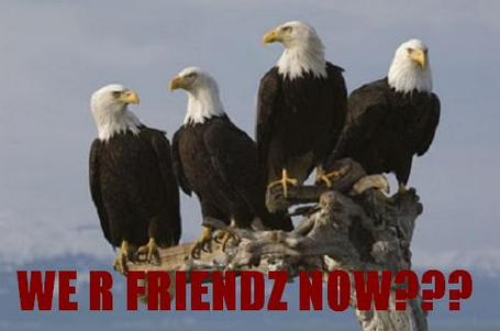 20_eagles_friends_medium