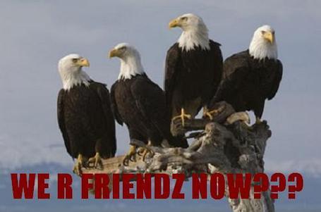 20_eagles_friends_medium
