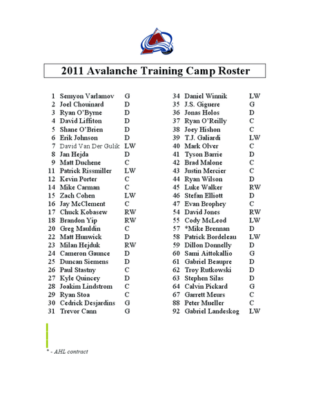 2011_training_camp_roster_medium