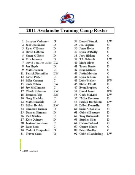 2011_training_camp_roster_medium